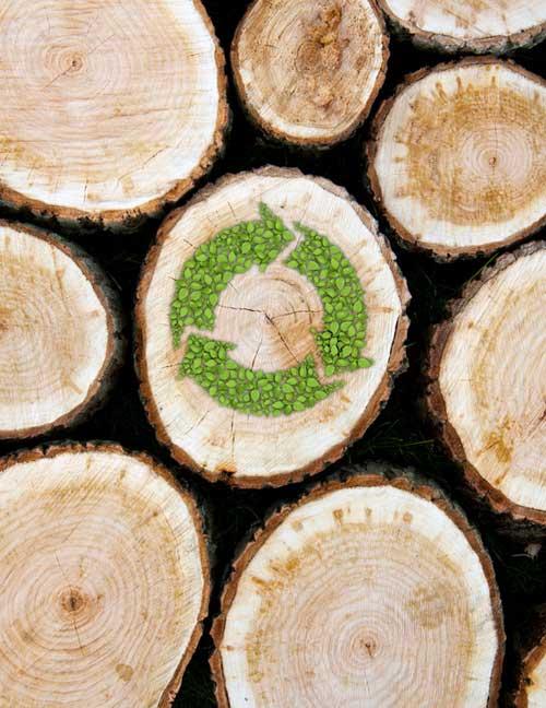 ScanaBouw gebruikt hout uit duurzaam beheerde bossen